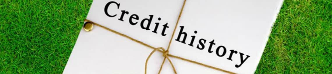 Займ без проверок кредитной истории